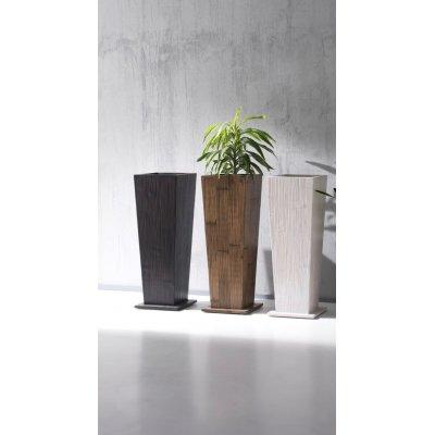vaso Essential