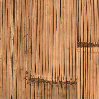 crash bambù miele antico